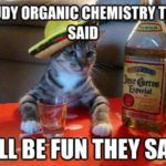 Study Organic Chemistry They Said