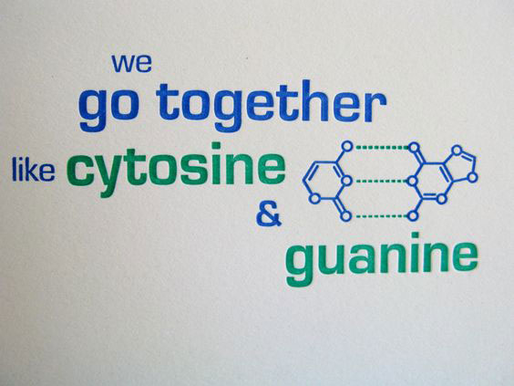 We Go Together Like Cytosine & Guanine