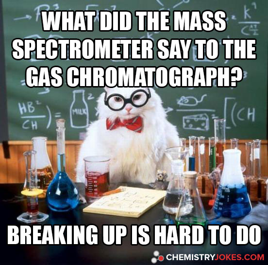 what did the mass spectrometer say to the gas chromatograph