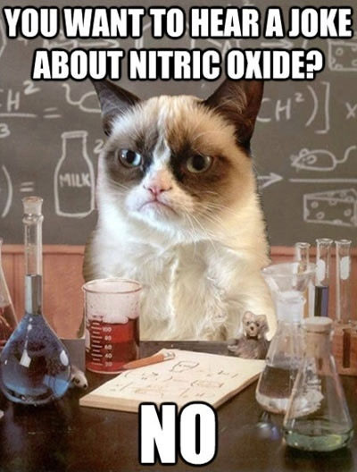 You Want To Hear A Joke About Nitric Oxide?