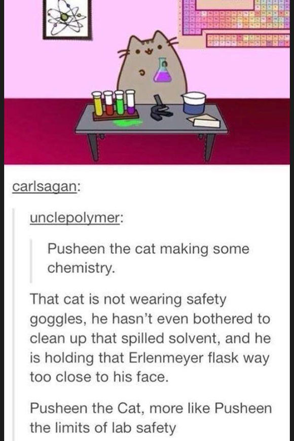 Pusheen The Cat Making Some Chemistry