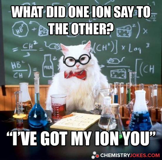 What Did One Ion Say To The Other?